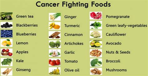 nutrition in cancer care pdq shop infopembesarpenis com