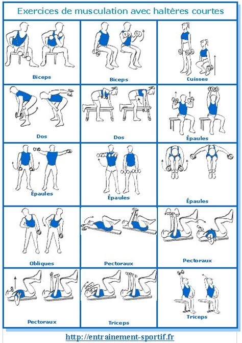 programme musculation femme salle musculation avec halt 232 res exercices et programme motivation comment et remise en forme pour