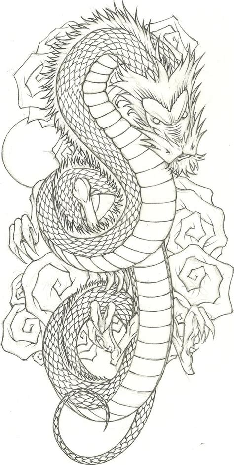 dragon flash  vizualassassin  deviantart