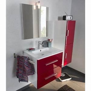 Meuble Salle De Bain Castorama : ensemble de salle de bains cooke lewis volga 80 cm ~ Melissatoandfro.com Idées de Décoration