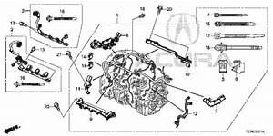 Engine Wire Harness  2  For 2015 Acura Tlx Sedan