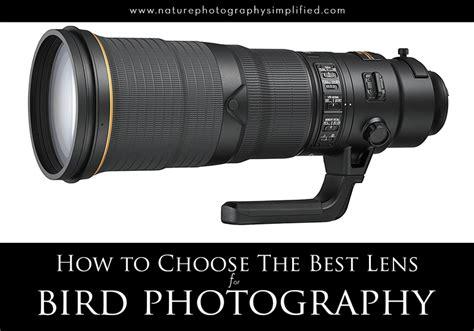 Choosing The Best Eyeglass Lenses Best Lens For Bird Photography For Beginners And