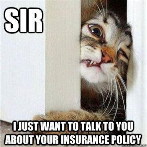 Pet Insurance Meme - 23 best memes images on pinterest insurance humor funny pics and funny stuff