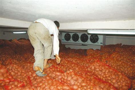 les chambre froide en algerie ces chambres froides qui enflamment les prix toute l