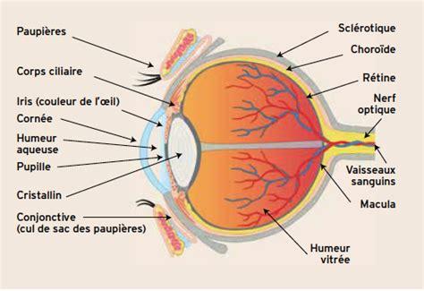 chambre appareil photo sport et pathologies oculaires savoir les reconnaitre