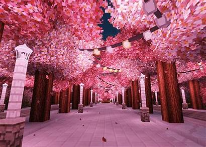 Aesthetic Minecraft Cherry Roblox Blossoms Anime Encrypted