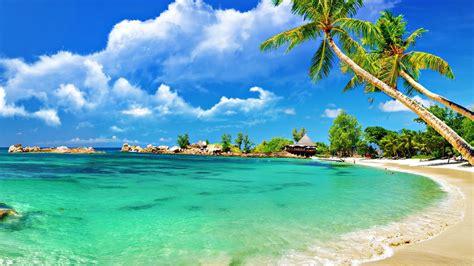 Tropical Palm Beach 1920x1080 Best Photography Hd