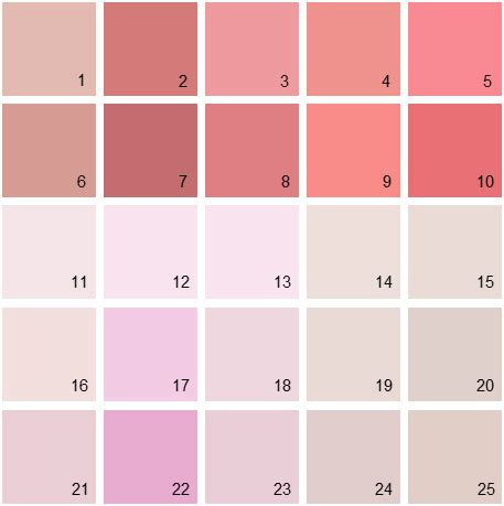 benjamin paint colors pink palette 08 house