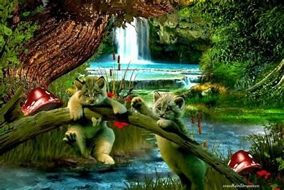 Naturaleza Movimiento Animales Gifs Imagenes Google Animated