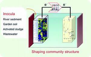 Shaping Of Bacterial Community Structure In Microbial Fuel
