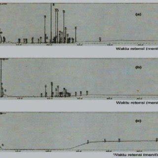struktur  komponen arang  arang aktif tempurung kemiri