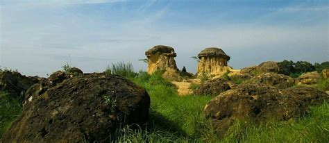 pesona bukit jamur gresik  wajib dikunjungi