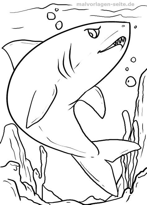 Witte Haai Kleurplaat by Kleurplaat Haai