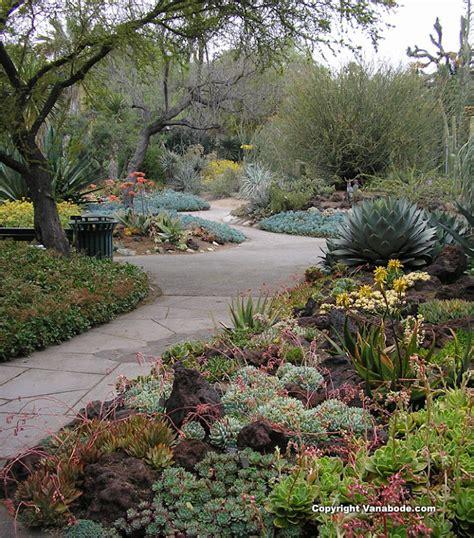 cactus garden top world travel destinations huntington library cactus garden usa