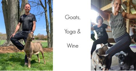 goats yoga wine  troutman vineyards winery wooster