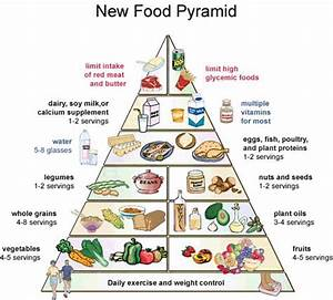 Just A Marine  Another Food Pyramid