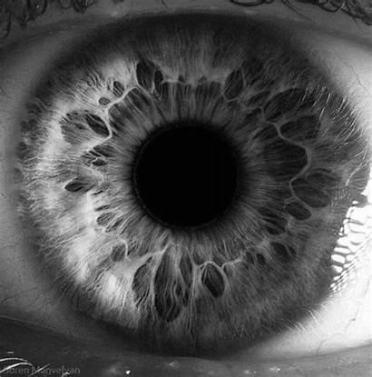 Dilating Eye Giphy Gifs