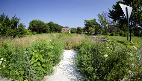 Detroit residents might get vacant lots for $100 ...
