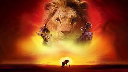 Lion King Wallpapers Deviantart Fate Dark Desktop