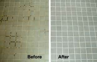 ways cleaning pet house cleaning eco service