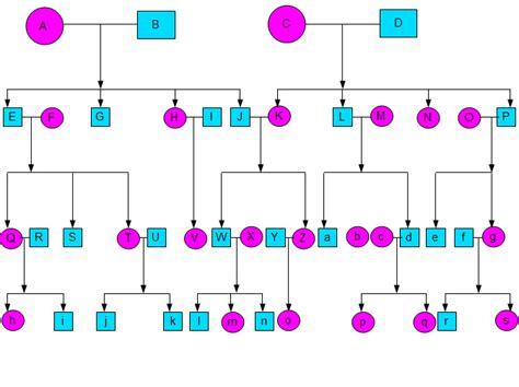 family tree template examples amelia morgan