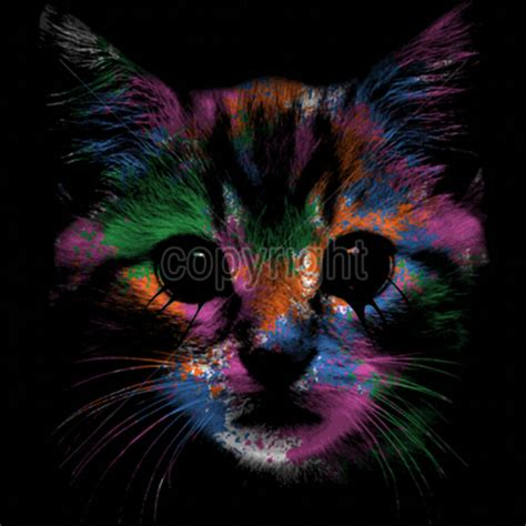 kitty face neon colors cat kitten animal lovers funny