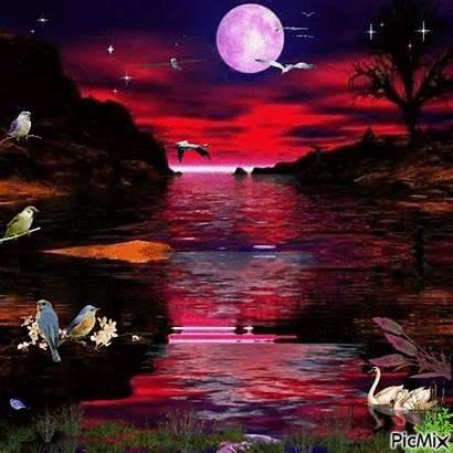 Picmix Moon Lake Night Gifs Noite Img1