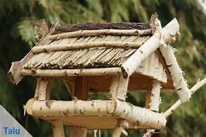 Spitzmäuse Im Garten : maik fer und junik fer plage sind sie gef hrlich was ~ Lizthompson.info Haus und Dekorationen