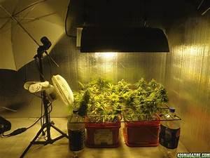 Bedroom Grow Room 28 Images Lind K5 Xl1000 Vs Ds Xte