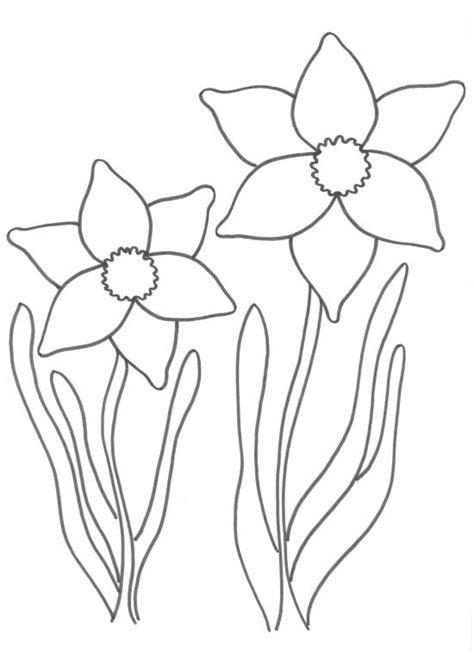 Kleurplaat Narcis by Voorjaarsknutsel Narcis