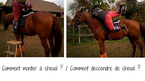 monter comme un cheval comment monter a cheval descendre de cheval