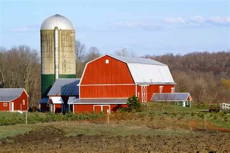 Now i have to wait until spring for parsnips to finish the. Dairy Farm Scene In The Spring Stock Photo - Download ...