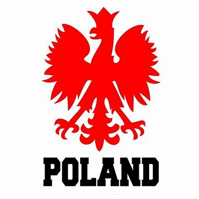 Polish Eagle Falcon Clipart Flag Clip Poland