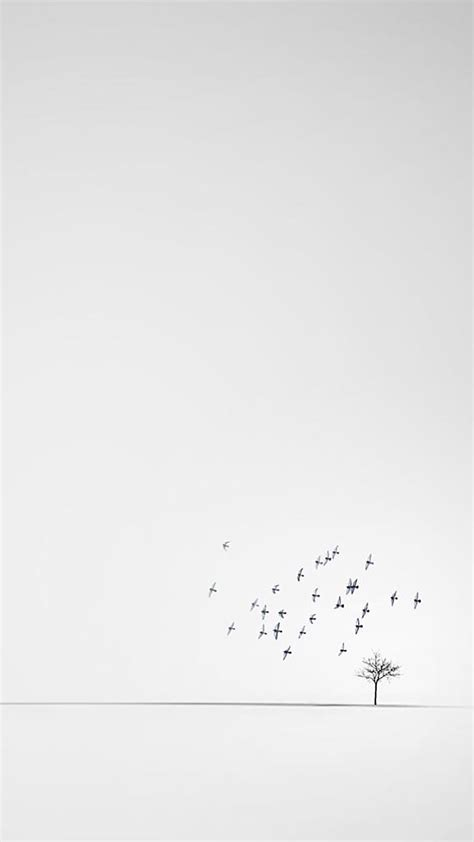 iphone minimalistic white wallpaper wallpaperssss