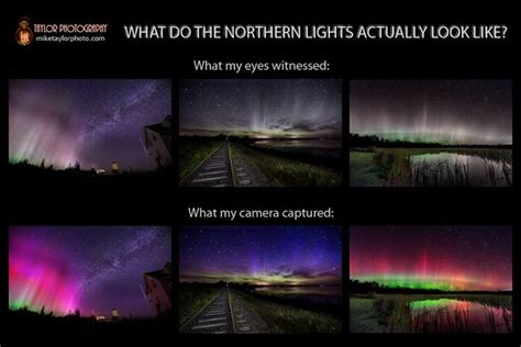how often can you see the northern lights how we see the aurora borealis camera vs human eyes