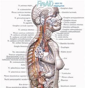 Остеохондроз позвоночника лечение в самаре