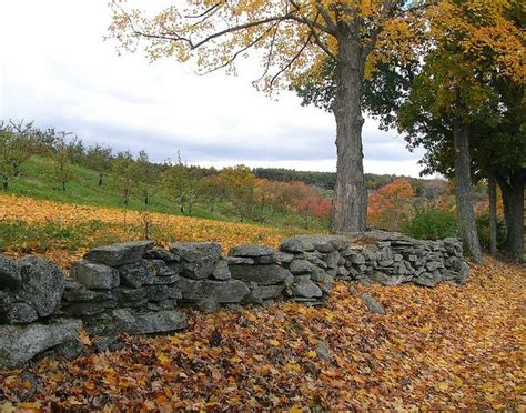 106 Best Images About Old Stone Walls On Pinterest  Connecticut, Red Barns And Londonderry
