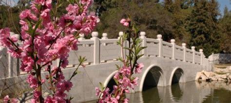 garden of flowing fragrance religion kosmic music the bridge to oneness