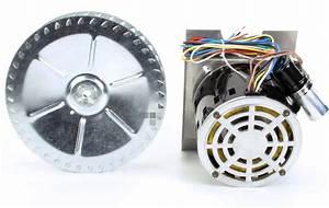 250 3 Hp Emerson  Dual Voltage