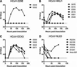 Isolation Of Clinical Hcov Isolates On Hae Cell Cultures Infected With