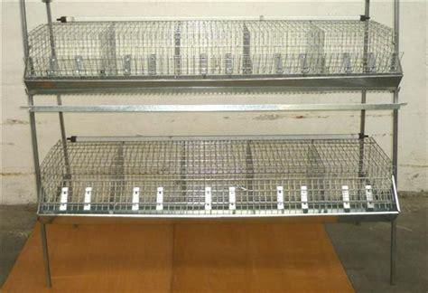 gabbie per conigli da ingrasso usate gabbia ingrasso conigli