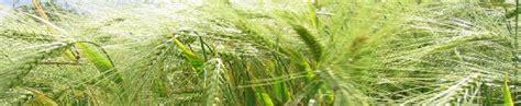 chambre d agriculture meurthe et moselle productions végétales meurthe et moselle