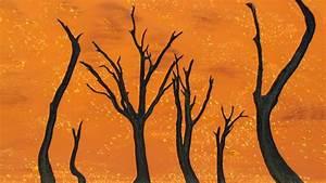Wallpaper namibia, 5k, 4k wallpaper, 8k, camel thorn tree