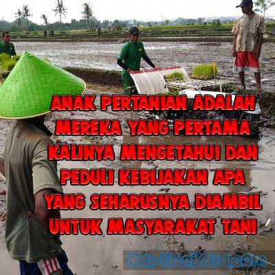 gambar status fb anak pertanian  ig kata bijak motivasi terbaru captionkatacom