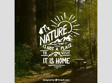 Lettering and quote design on forest background Vector
