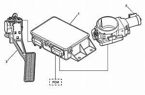 24x Reluctor  Electronic Throttlebody   U0026 39 S
