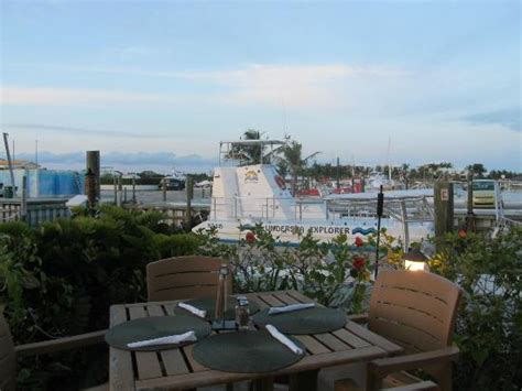 Tiki Hut Turks And Caicos by Looking Out At The Marina From Our Table Picture Of