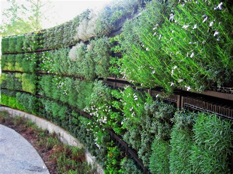 Vertical Garden by Edible Vertical Gardens With Elmich Green Walls Elmich