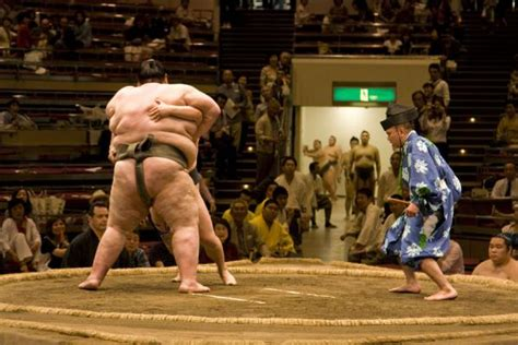 sumo wrestling travel story  pictures  japan
