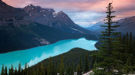 1920x1080 Peyto Lake Canada Mountains 4k Laptop Full Hd